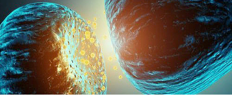 Brain Awareness Week – Are Your Neurotransmitters in Balance?