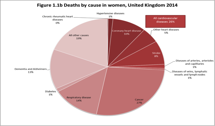 Take heart series part 1 how and why promote action on stroke looking only at healthcare costs grossly underestimates the total cost and burden of cardiovascular disease cvd in the uk production losses from death ccuart Gallery