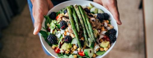 Plant based diet webinar